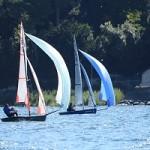 Fast sailing mini